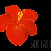 logo silk fashion
